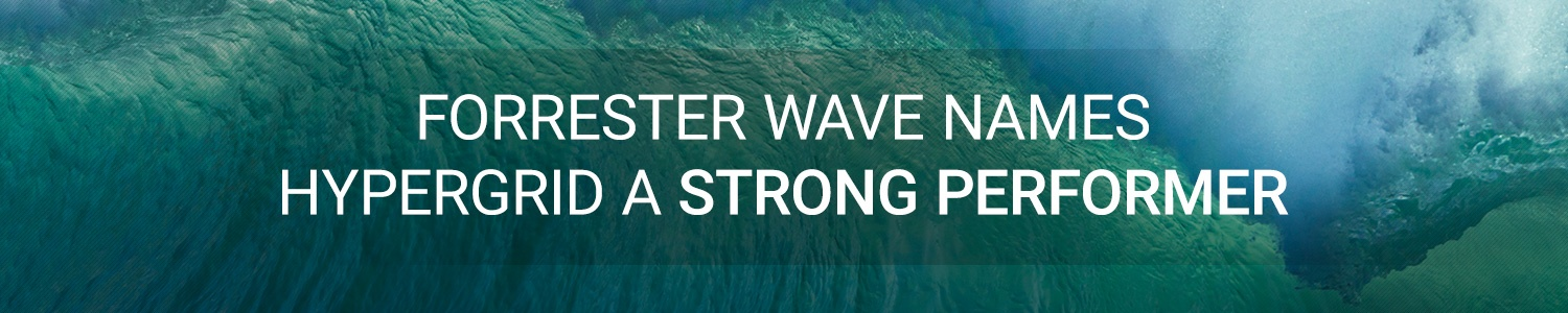 Forrester wave names hypergrid a strong performer